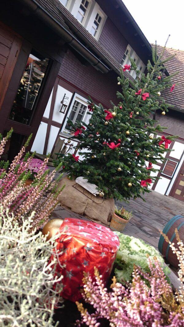Gude Stub Casa Antica Weihnachtsbaum